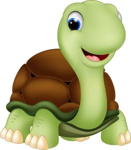 Strategie Schildkröte
